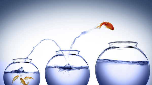 Is Your Company Just Maintaining the Status Quo?